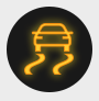 Traction Control Indicator Light